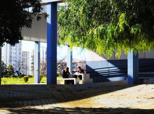 Facultad de Derecho